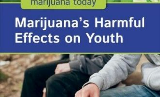 Marijuana's Harmful Effects on Youth, Library by Nelson, Julie, Brand New, Fr... 2