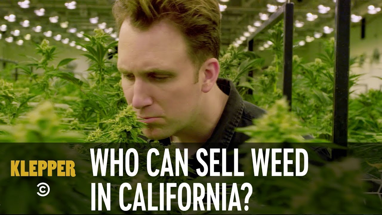 Who Gets to Sell Weed in California? - Klepper 1