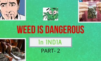 Weed In INDIA | IS VERY DANGEROUS | Stoner Tips 9