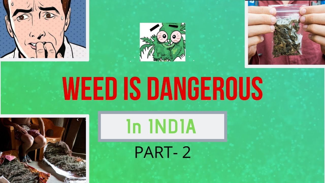 Weed In INDIA | IS VERY DANGEROUS | Stoner Tips 1