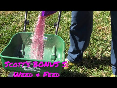 Scott's Bonus S Application | Backyard Weed ID | Mowing Tips 1