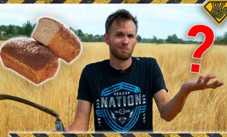 Turning Roadside WEEDS Into BREAD 6
