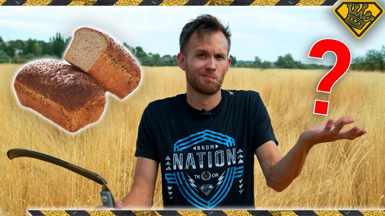 Turning Roadside WEEDS Into BREAD 1