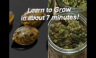 Learn how to grow weed in under 7 minutes! 4