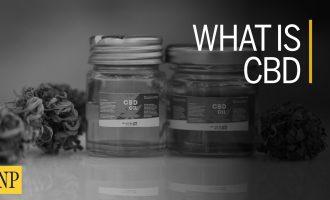 What is CBD? 7