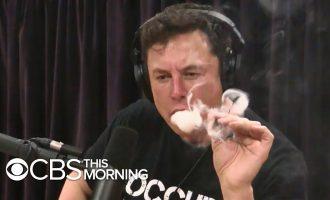 Tesla shares drop after Elon Musk appears to smoke marijuana 6