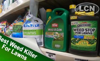 Best Weed Killer For Lawns Part 1 | DIY Lawn Care 1