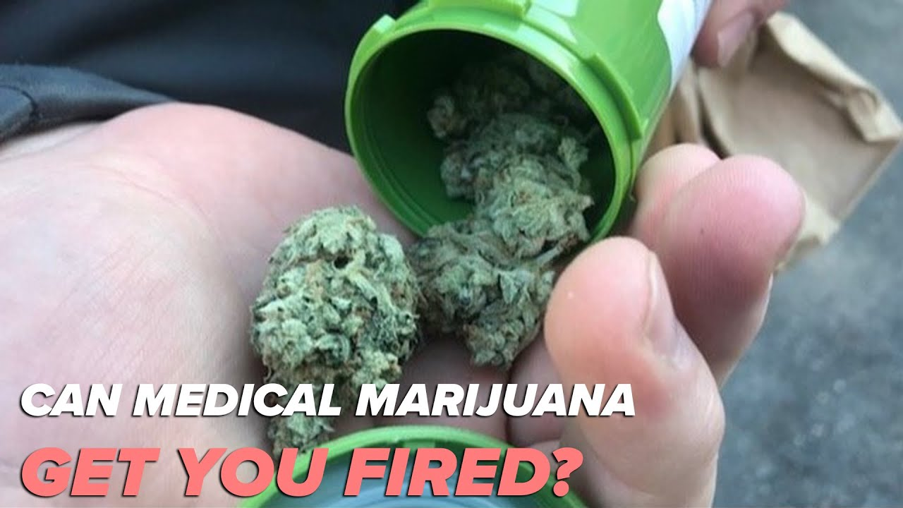 Can your medical marijuana get you fired? 1