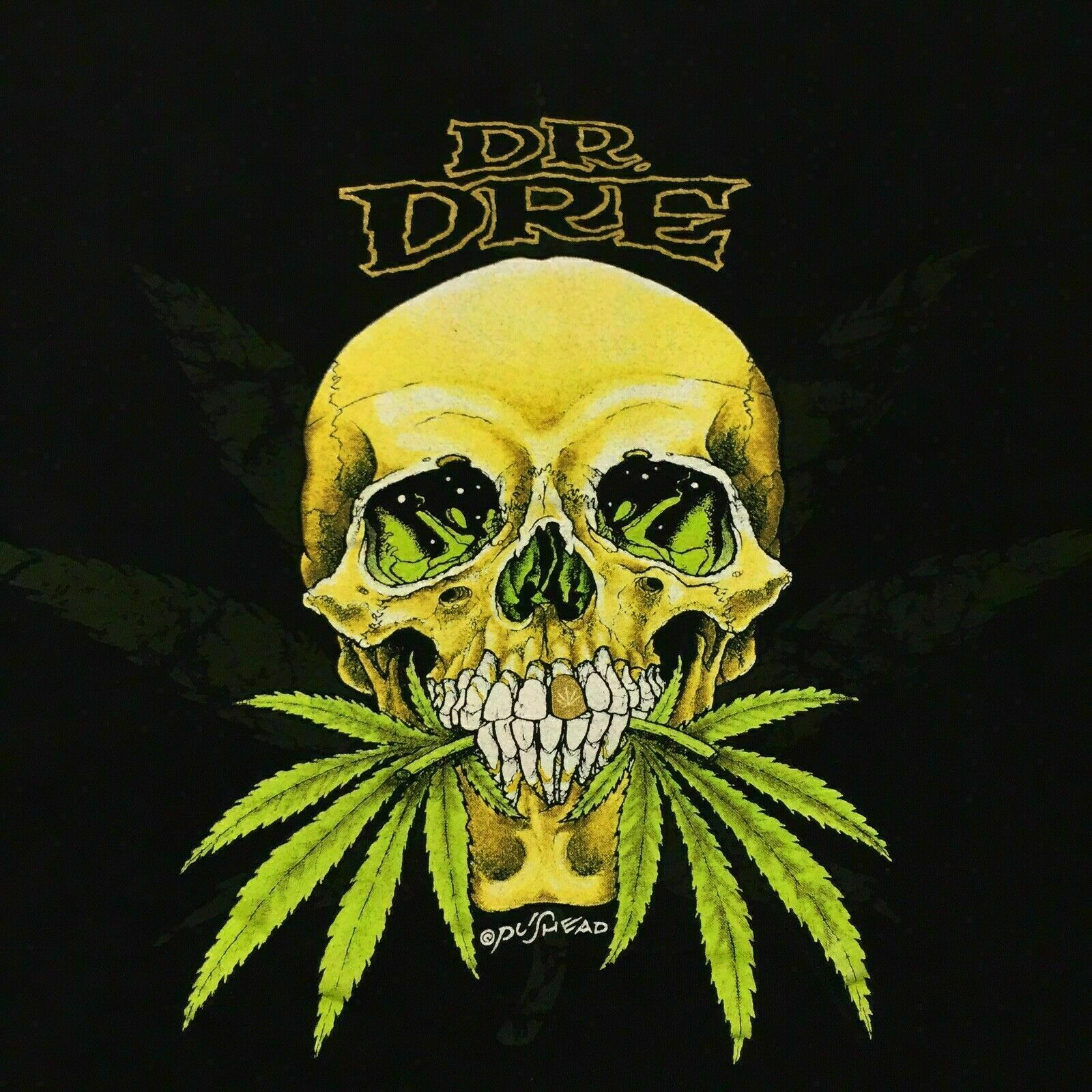 Details about  VTG Dr. Dre T Shirt Concert Soft Tour Pushead Weed Marijuana 1