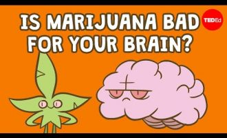 Is marijuana bad for your brain? - Anees Bahji 3