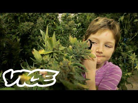 Medical Marijuana for Minors 1