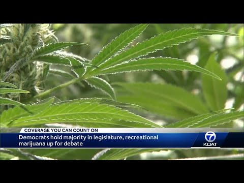 Democrats hold majority in legislature, looking to legalize recreational marijuana 1