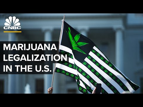 Is Marijuana Legalization Inevitable In The US? 1
