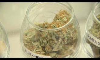 NJ to establish legal marijuana market 4