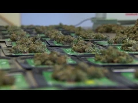 Virginia lawmakers approve marijuana legalization 1