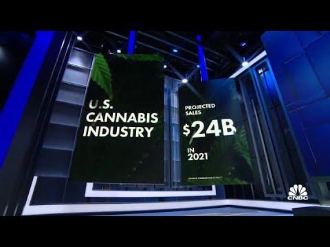 Senate Democrats push for nationwide marijuana legalization 1
