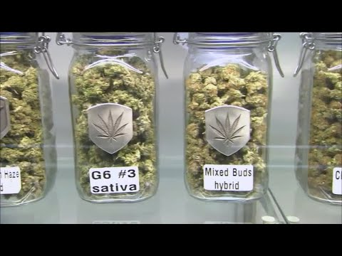 360: The proposal to legalize marijuana 1