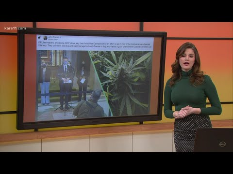 Should Minnesota change its marijuana laws? 1