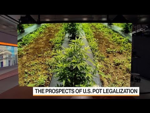 Mexico Moves Closer to Legalizing Marijuana 1