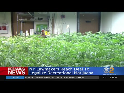NY Lawmakers Reach Deal To Legalize Recreational Marijuana 1