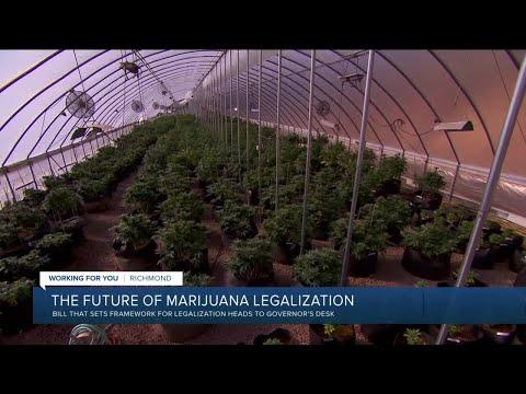 Virginia lawmakers vote to legalize marijuana in 2024 1