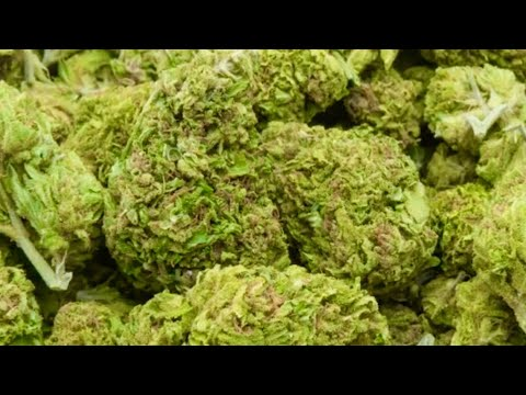 Cresco Labs CEO on the outlook for federal legalization of marijuana, the banking bill, and earnings 1