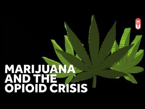 Can Marijuana Help with Opioid Addiction? 1
