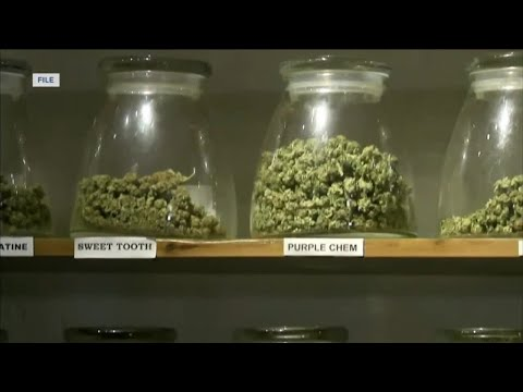 Milwaukee Alders push to eliminate possession fines for small amounts of marijuana 1