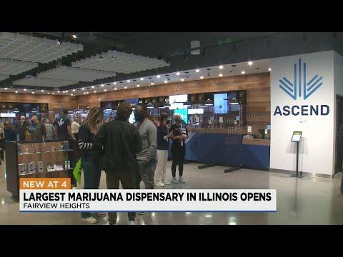 Illinois' largest marijuana dispensary now open in Metro East 1