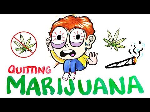 What Happens When You Quit Marijuana? 1