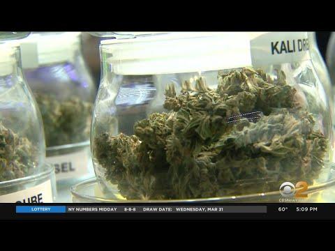 Recreational Marijuana Legalized In New York 1