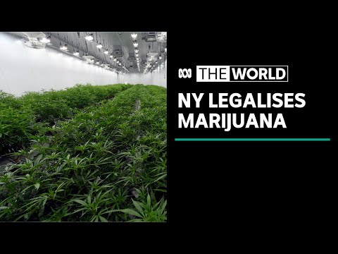 NY legalises recreational marijuana use | The World 1