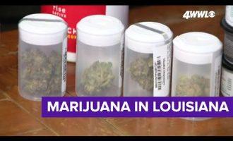 Louisiana Republican defends his legalize marijuana bill 4