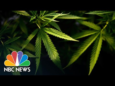 Virginia Becomes First Southern State To Legalize Marijuana | NBC News NOW 1