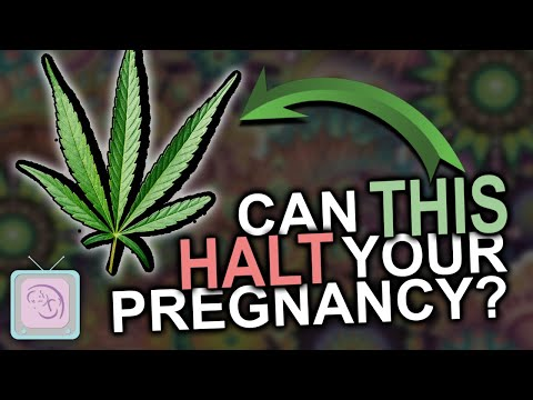 Can you smoke pot when TTC? Some REALLY surprising findings about marijuana and fertility 1