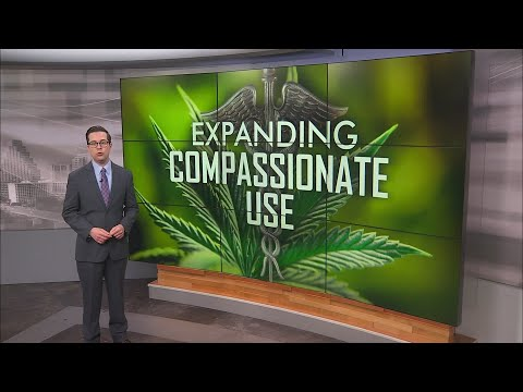 State of Texas: New push to expand access to medical marijuana 1
