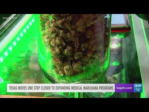 State House approves marijuana measure, lighting up possibilities across Texas 1