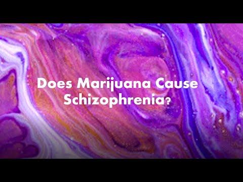 Does Marijuana Cause Schizophrenia? 1