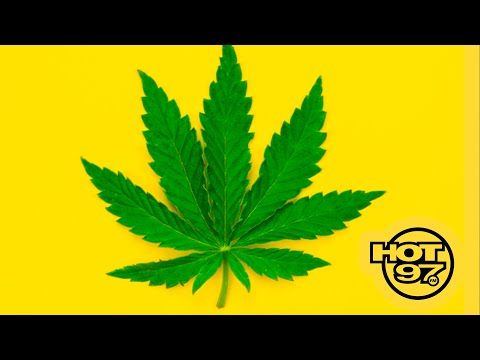 New York Legalizes Marijuana! Here's What It Means For You! 1
