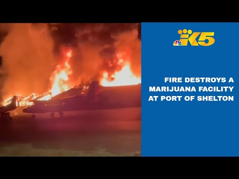 Marijuana facility destroyed in fire at Port of Shelton 1