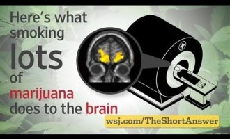 Marijuana: Heavy Users Risk Changes to Brain 1