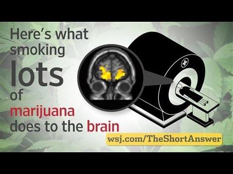 Marijuana: Heavy Users Risk Changes to Brain 1