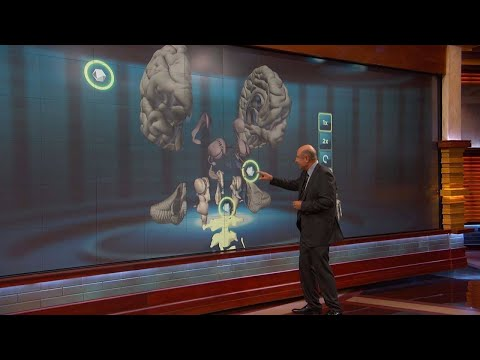 Dr. Phil Explains Physical Effects Of Regular Marijuana Use On The Brain 1