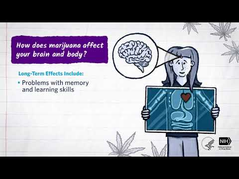 Mind Matters: How Does Marijuana Affect Your Brain and Body? 1