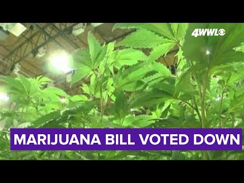 Bill to legalize marijuana in Louisiana dies in the House, author hopeful for next year 1