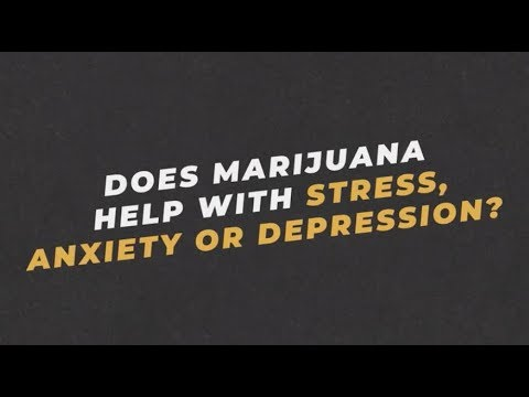 Ask an Expert: Dr. Jasmin Zavala on Whether Marijuana Helps Stress, Anxiety or Depression | You Can 1