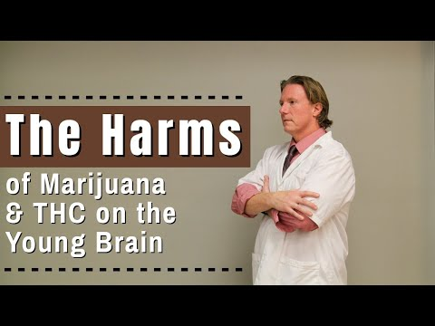 The Harms of Marijuana & THC on the Young Brain 1