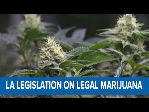 New legislation in Louisiana could possibly lead to the legalization of marijuana 1