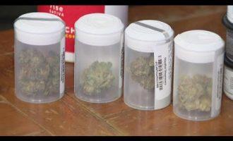 La. House backs bill to allow smokable medical marijuana 7