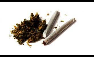 Is Marijuana Addictive? | Marijuana 3